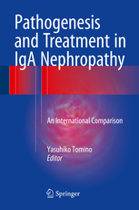 Pathogenesis and Treatment in IgA Nephropathy