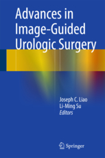 Advances in Image-Guided Urologic Surgery